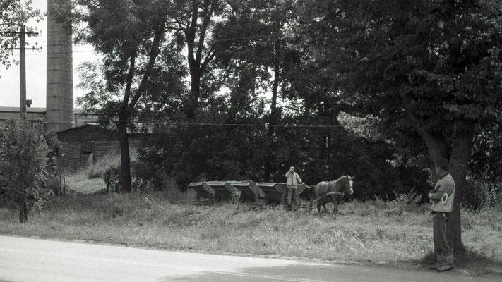 2000 // Kwilen // Pferdebahn
