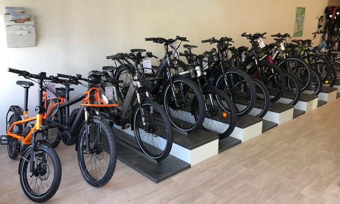 Pedelecs, Speed-Pedelecs und Elektrofahrräder in der e-motion e-Bike Welt in Wien - Österreich