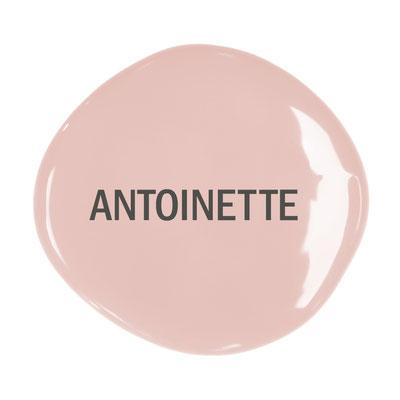 Chalk Paint Antoinette
