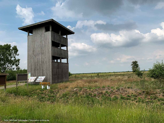 Beobachtungsturm am Rehdener Geestmoor