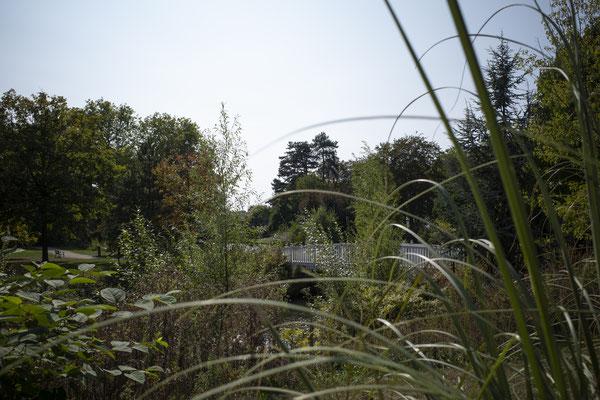 Beautiful Meerssen, oftewel Práchtig Meerssen. De naam van onze schoonheidssalon is een ode aan het prachtige Meerssen, gelegen in Zuid-Limburg, naast Maastricht. Foto: Proosdijpark Meerssen