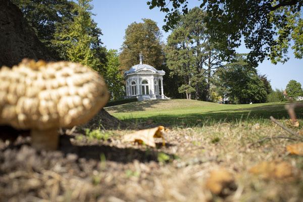 Beautiful Meerssen, oftewel Práchtig Meerssen. De naam van onze schoonheidssalon is een ode aan het prachtige Meerssen, gelegen in Zuid-Limburg, naast Maastricht. Foto: Theehuis Proosdijpark Meerssen