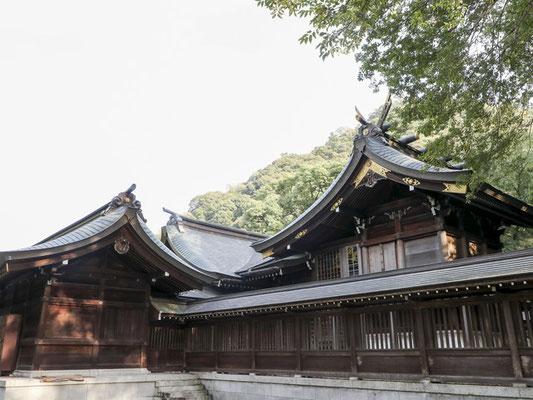 護国神社 御本殿の屋根葺き替え