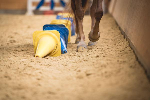 Dual Aktivierung, Pferd, Hufe, Reitunterricht, Sebastian Frank Fotografie
