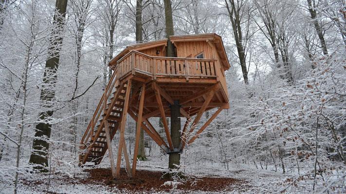 Baumhaus Kobel, Baumhaushotel Solling