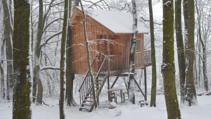 Baumhaus Ahletal, Baumhaushotel Solling