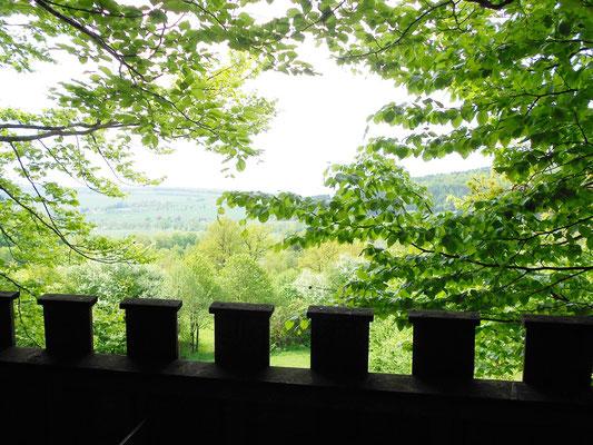 Baumhaus Burg, Ausblick. Bild: Baumhaushotel Solling.
