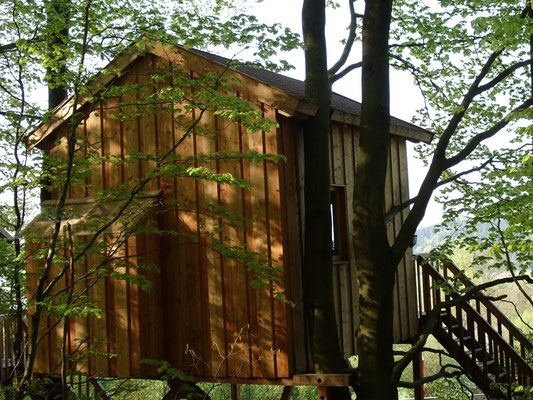 Baumhaus Sternengucker, Rückansicht. Bild: Baumhaushotel Solling.