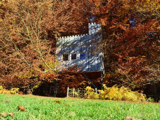 Baumhaus Burg, Herbst. Bild: Baumhaushotel Solling.