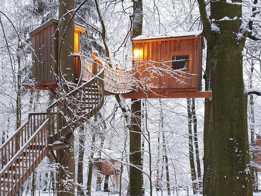 Baumhaus mit Schnee, Baumtraum, Jan. 2021. Bild: Baumhaushotel Solling.