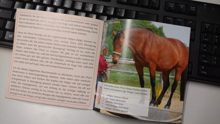 ...bietet nützliche Infos rund um die Pferdewippe!