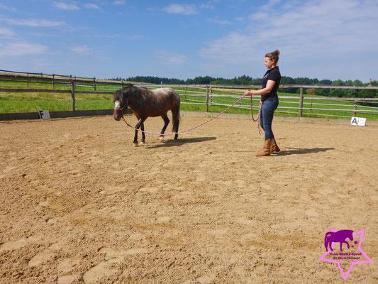 Der Klassiker: Rony-Pony läuft im Kreisbogen um Yvonne
