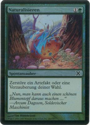Naturalisieren Deutsch Zehnte Edition foil