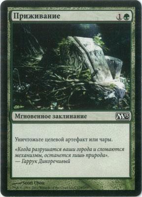 Naturalisieren Russisch M13