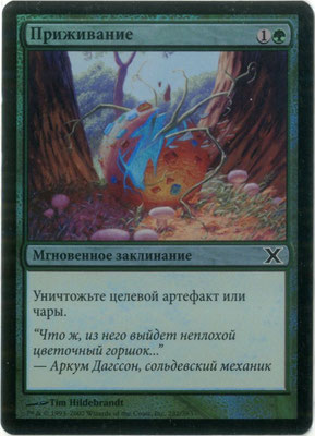 Naturalisieren Russisch Zehnte Edition foil