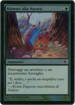 Naturalisieren Italienisch Zehnte Edition foil
