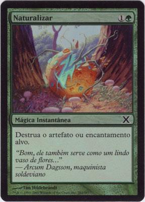 Naturalisieren Portugiesisch Zehnte Edition foil