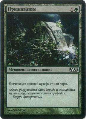 Naturalisieren Russisch M13 foil