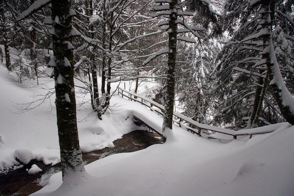 Pont du Rossignolet-Le Mont Dore (Auvergne) Février 2006