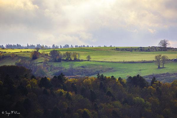 Plateau de Charlannes vers Liournat - Massif du Sancy - Auvergne - France