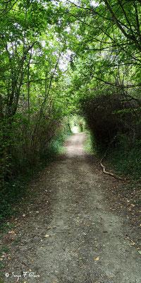 Sur le chemin de Compostelle à la sortie de Auvillar