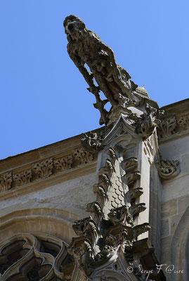 Gargouille de l'église Saint Rémy de Dieppe (Dieppe - Haute Normandie - France - Juin 2012)