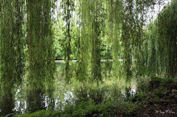 Parc du château d'Anet - Diane de Poitiers - XVIème siècle (Anet - Eure et Loire)