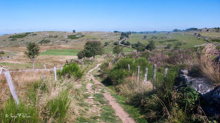 En allant vers Montgros - France - Sur le chemin de St Jacques de Compostelle (santiago de compostela) - Le Chemin du Puy ou Via Podiensis (variante par Rocamadour)