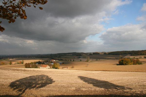 Paysage d'Allier (Novembre 2007)