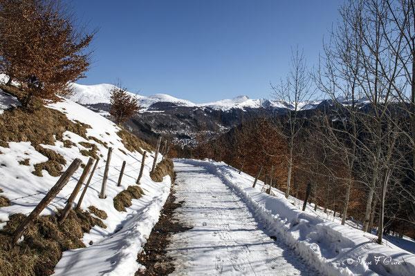 Vue sur le Mont Dore du chemin de Légal en hiver - Massif du Sancy - Auvergne - France
