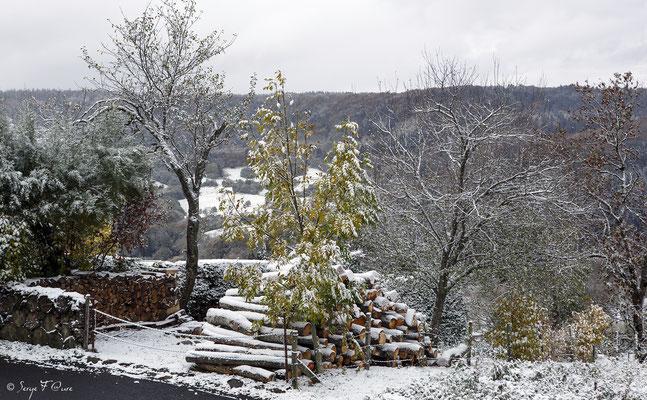 Paysage d'automne le lendemain à Murat le Quaire - Massif du Sancy - Auvergne - France