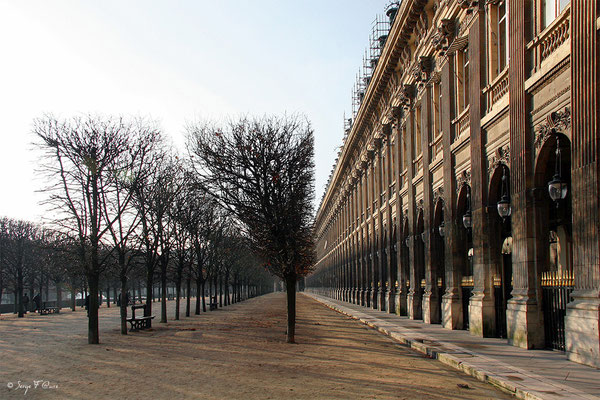 Les jardins du Palais Royal - Paris - France - 2006