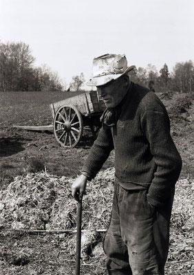 Paysans au champ - Le tombereau de fumier - Auvergne (1978)