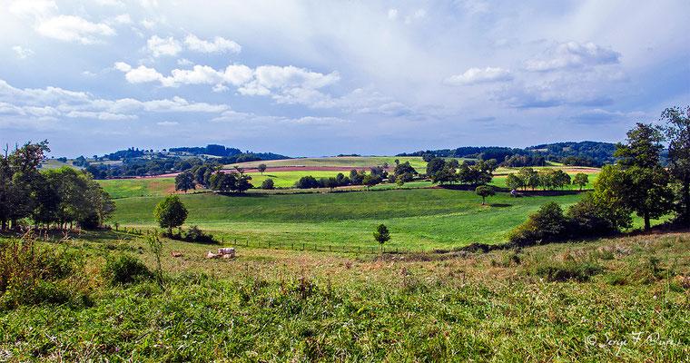 En allant vers Le Soulier - France - Sur le chemin de St Jacques de Compostelle (santiago de compostela) - Le Chemin du Puy ou Via Podiensis (variante par Rocamadour)