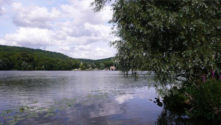 Vernon 2008