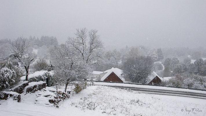 Paysage de neige - Murat le Quaire - Massif du Sancy  - Auvergne - France