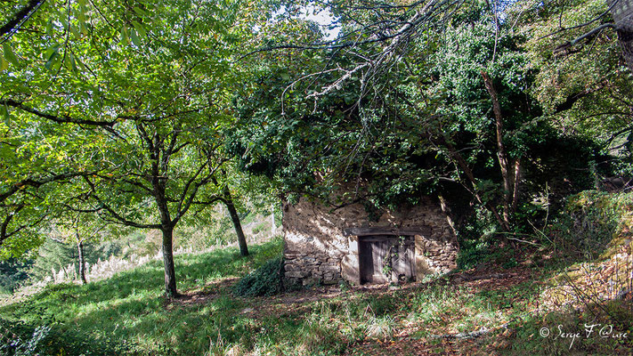 En allant vers Golinhac - France - Sur le chemin de St Jacques de Compostelle (santiago de compostela) - Le Chemin du Puy ou Via Podiensis (variante par Rocamadour)