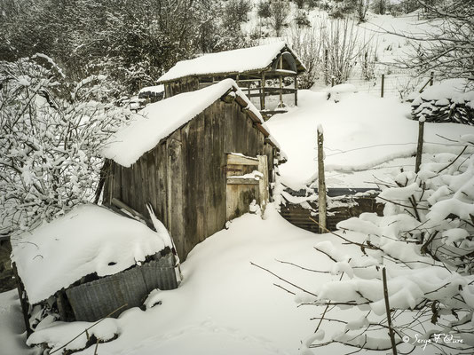 Les cabanes en bois sur le chemin des caves à Murat le Quaire - Massif du Sancy - Auvergne - France