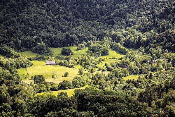 Entre rayons de soleil et nuages - Domaine Fohet - Massif du Sancy - Auvergne - France