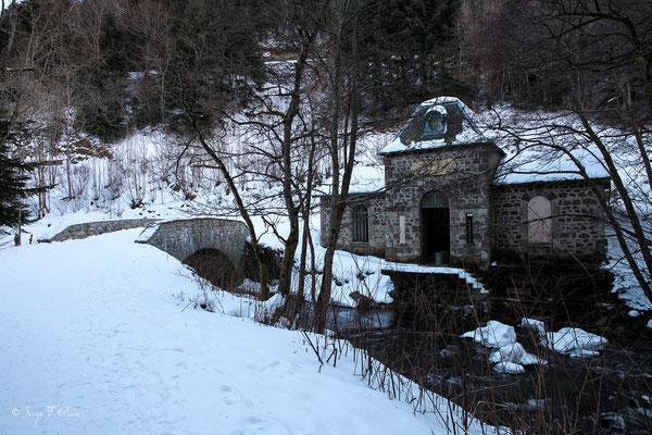 Source Félix au bord de la Dordogne - le Mont Dore - Massif du Sancy - Auvergne - France