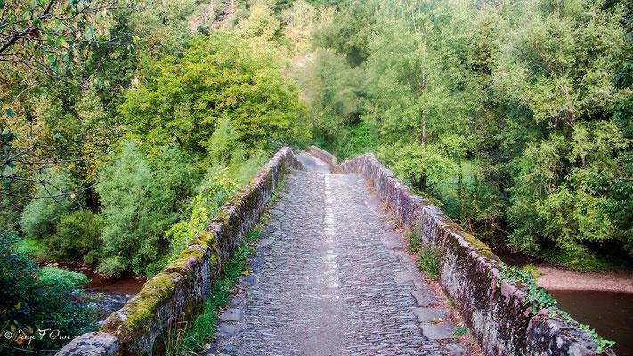 Pont Romain à la sortie de conques  (Chemin de Compostelle 2014)