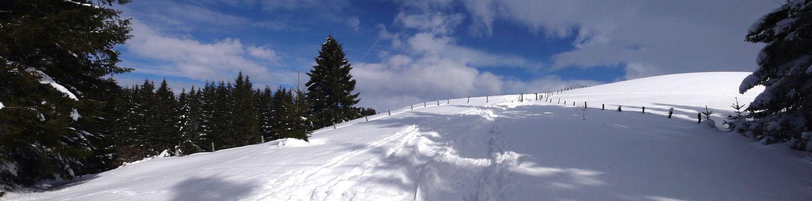 En montant à la Banne d'Ordanche au dessus du bourg de Murat le Quaire - Massif du Sancy - Auvergne - France