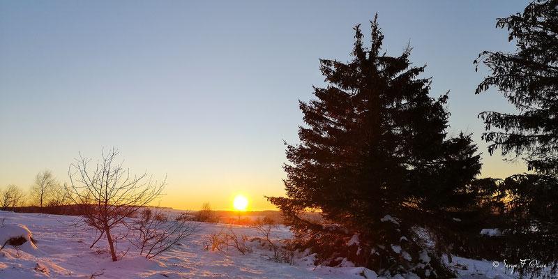 Coucher de soleil sur paysage de neige à Murat le Quaire - Massif du Sancy - Auvergne - France