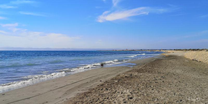 Les Saintes Maries de la Mer vue de la plage - Camargue - Bouches du Rhône - France