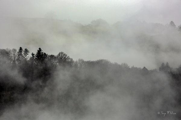 Brumes d'automne - Massif du Sancy - Auvergne - France