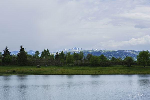 Lac de Murat le Quaire - Massif du Sancy - Auvergne - France