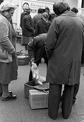 Foire de Giat (les volailles) - Auvergne - France (1978)