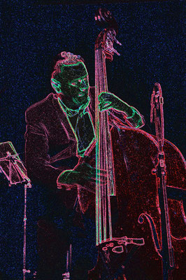 "Contebasse: Stephen Harrisson / Matthieu Boré ""Fats Domino's True Spirit"" / SancySnowJazz 2009"
