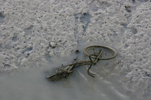 Vélo dans le port du Tréport à marée basse  (Normandie-France)