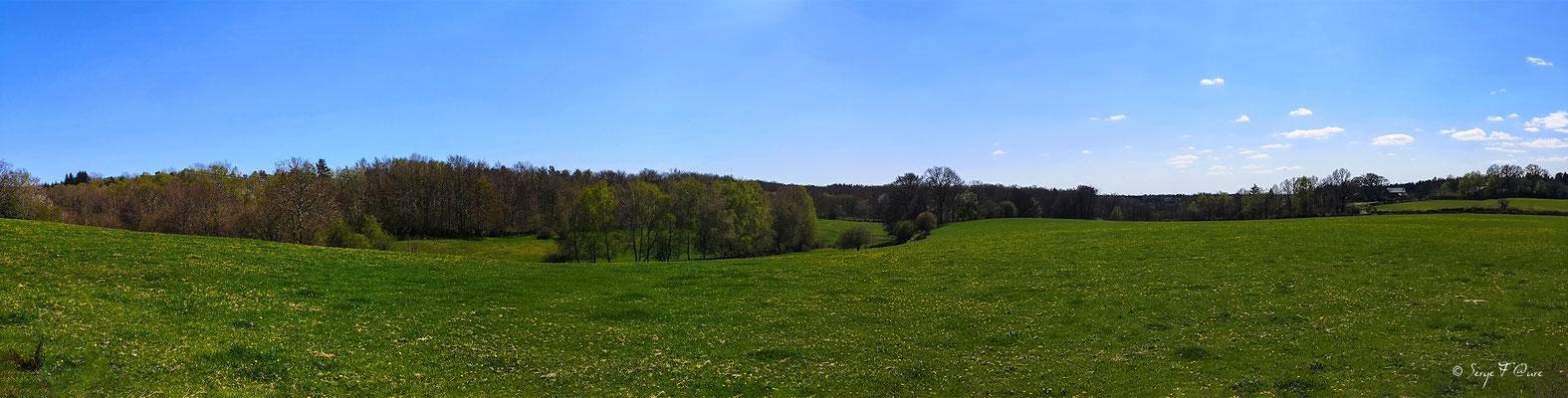 Paysage de campagne fleuris dans les Combrailles - Auvergne - France